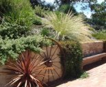 native garden makeover by Yummy Gardens Melbourne