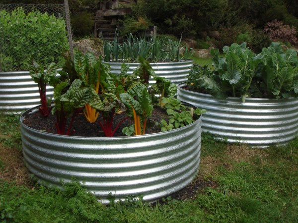 earth ring vegetable garden by Yummy Gardens Melbourne