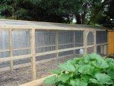 custom built chook run by Yummy Gardens