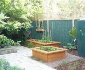 raised vegetable garden beds by Yummy Gardens Melbourne