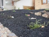 newly landscaped garden bed by Yummy Gardens Melbourne