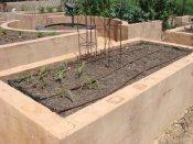 rendered block raised garden Yummy Gardens Melbourne