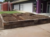 raised veggie patch at primary school in Melbourne