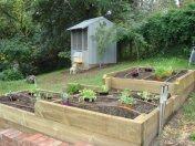 tri level veggie beds by Yummy Gardens Melbourne