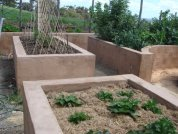 rendered block veggie garden Yummy Gardens Melbourne