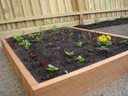 newly planted raised bed by Yummy Gardens Melbourne