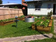 raised veggie beds with seats by Yummy Gardens Melbourne