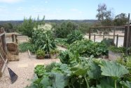 vegetable gardens with raised beds by Yummy Gardens Melbourne
