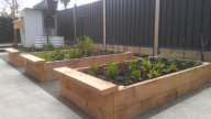 cypress veggie beds by Yummy Gardens Melbourne