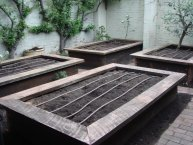 ironbark raised beds with irrigation in courtyard by Yummy Gardens Melbourne