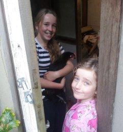 meeting the girls - new chooks
