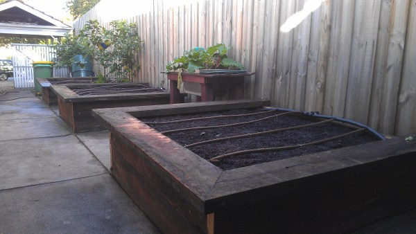 ironbark veggie beds along driveway by Yummy Gardens Melbourne