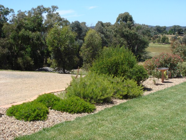 native garden border by Yummy Gardens Melbourne