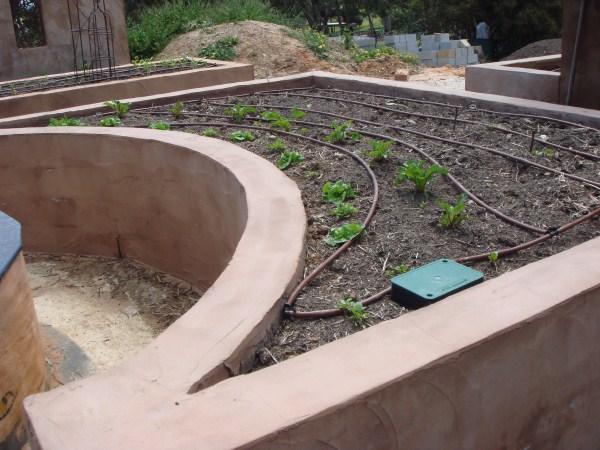 rendered block wall veggie garden Yummy Gardens Melbourne