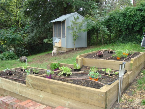 tri level veggie beds by Yummy Gardens Melbourne