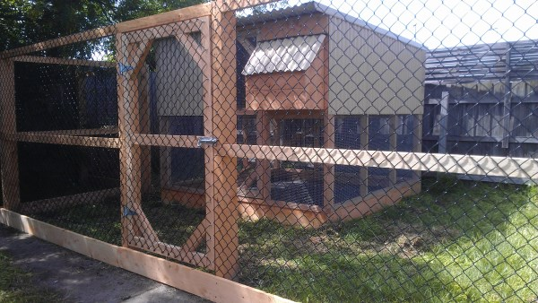 Chook house inside run area designed and built by Yummy Gardens Melbourne