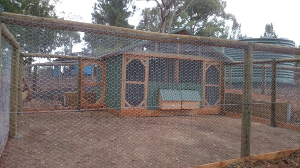 Double sided chicken house with enclosed run by Yummy Gardens Melbourne