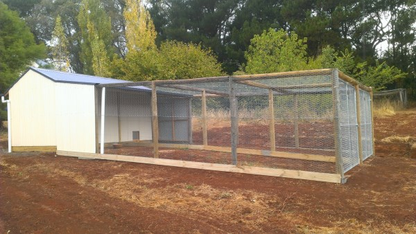 Dual chook run designed and built by Yummy Gardens Melbourne