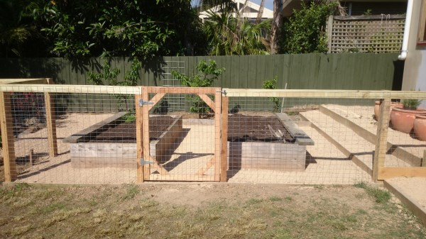 new fenced off area with raised veggie beds by Yummy Gardens Melbourne