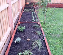 redgum sleeper raised vegetable garden bed