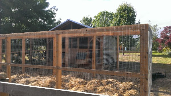 Secure chicken run and home by Yummy Gardens Melbourne