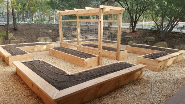 veggie garden at kindergarten designed & built by Yummy Gardens Melbourne