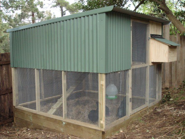 two tier hen house and run by Yummy Gardens