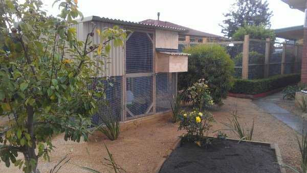 2 tier chicken house with run by Yummy Gardens Melbourne