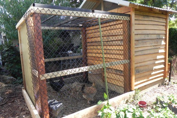radial sawn timber chook house by Yummy Gardens Melbourne