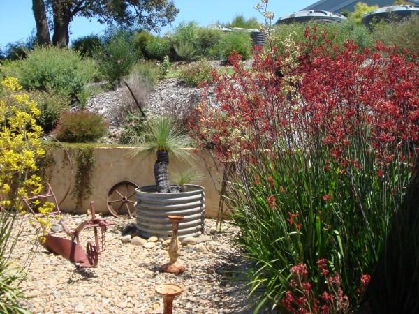 Native Garden designed & built by Yummy Gardens Melbourne