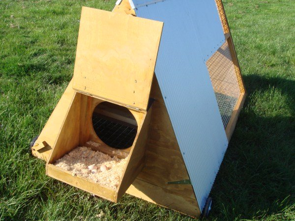 nesting area in chicken coop by Yummy Gardens