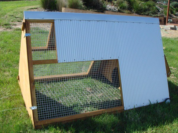 portable chicken tractor by Yummy Gardens