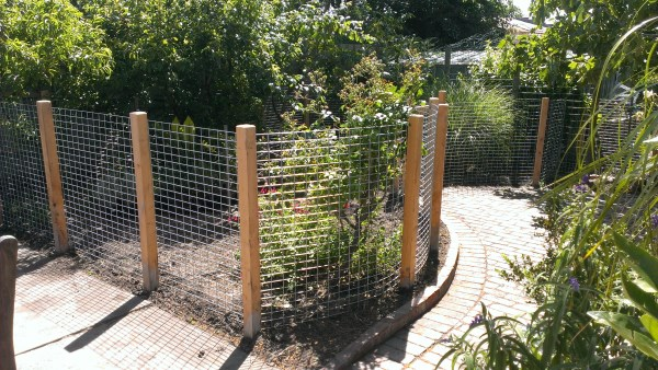 Angled garden fence by Yummy Gardens Melbourne