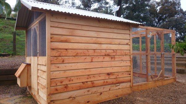 Cypress chook house with rear run by Yummy Gardens Melbourne