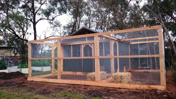 Double chicken run by Yummy Gardens Melbourne