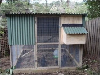 double story chook house
