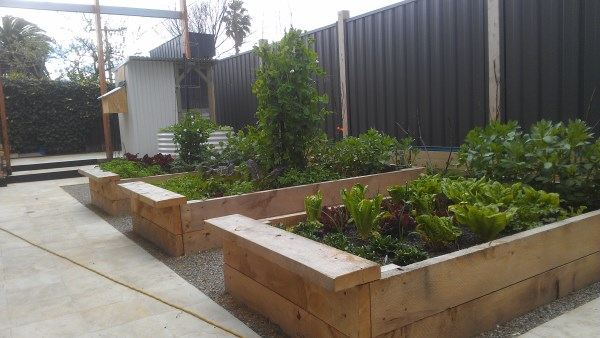 Established cypress veggie beds & small chook house by Yummy Gardens Melbourne