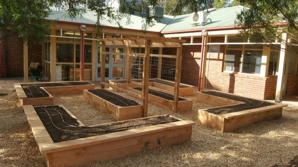 kindergarten veggie garden designed & built by Yummy Gardens Melbourne