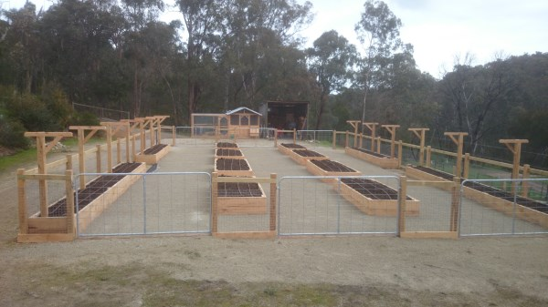 Raised veggie garden on an old menage & chook house designed & built by Yummy Gardens Melbourne