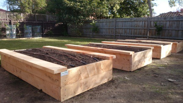 Reclaimed cypress raised veggie beds with seats & drip irrigation by Yummy Gardens Melbourne