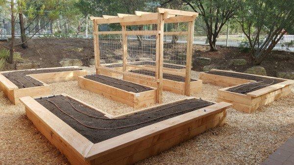 veggie garden at kindergarten designed & built by Yummy Gardens Melbourne